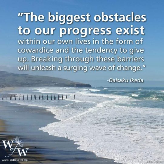 Biggest obstacles to progress